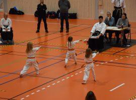 Karate i Revetalhallen